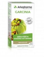 Arkogélules Garcinia Gélules Fl/45 à Nice
