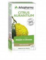 Arkogélules Citrus Aurantium Gélules Fl/45 à Nice