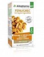 Arkogélules Fenugrec Bio Gélules Fl/40 à Nice
