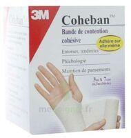 Coheban, Blanc 3 M X 7 Cm à Nice