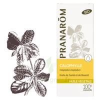 Pranarom Huile Végétale Bio Calophylle 50ml à Nice