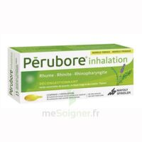 Perubore Caps Inhalation Par Vapeur Inhalation Plq/15 à Nice