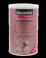 Biocanina Lait Poudre Maternisé B/400g à Nice