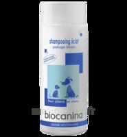 Biocanina Shampooing éclat Pelage Blanc 200ml à Nice