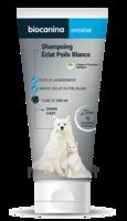 Biocanina Shampooing éclat Poils Blancs 200ml à Nice