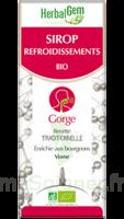 Herbalgem Sirop Bio Refroidissement 150ml à Nice
