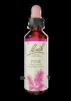 Fleurs De Bach® Original Pine - 20 Ml à Nice